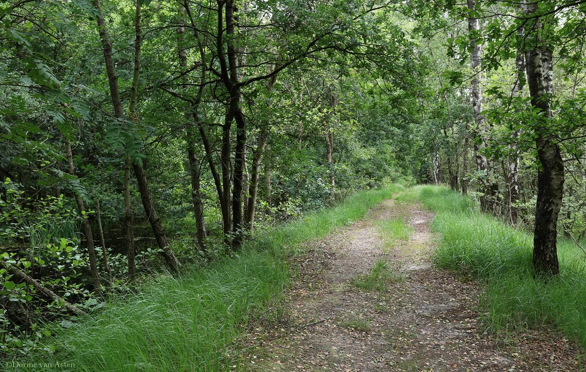 oude wandelroute