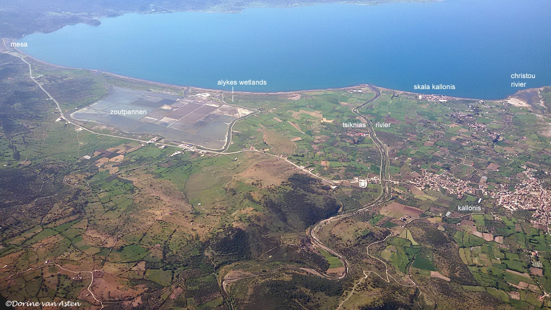 Omgeving Kalloni en zoutpannen