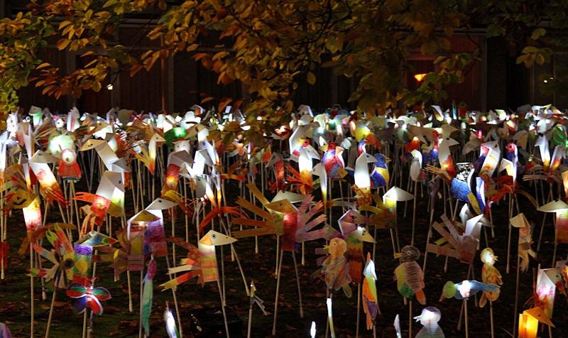 Fladderaars van Licht, Glow for Kids - Dommelhoef